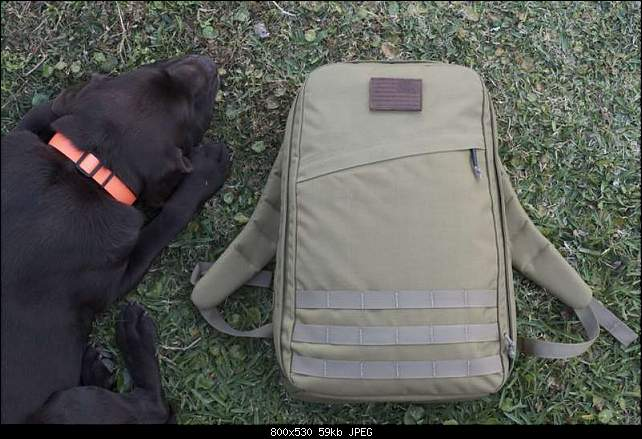Click image for larger version.  Name:GR1Coyote.jpg Views:93 Size:58.5 KB ID:27056